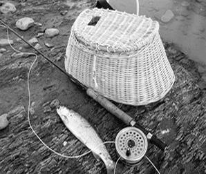 Licencias de Pesca (Río)
