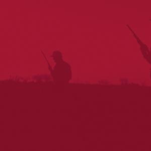 cazadores1
